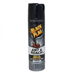 Black Flag Ant AND Roach Killer Unscted 17