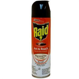 Raid Ant AND Roach 17.5oz Fragrance Free