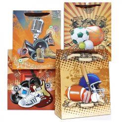 Gift Bags 3D Lg Asst Designs