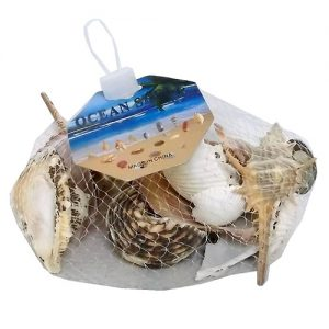 Seashells Asst In Mesh Bags