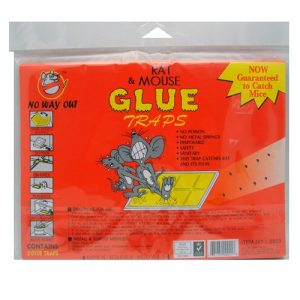 Rat AND Mouse Glue Traps 2pk Flat